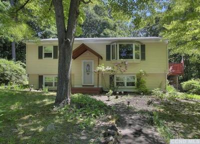 Copake Single Family Home For Sale: 1231 Lakeview Road