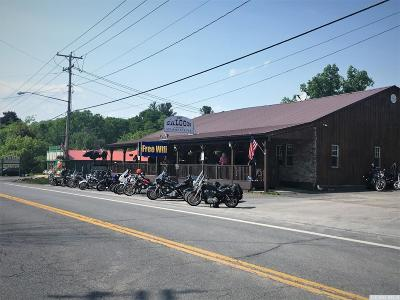 East Durham NY Commercial For Sale: $575,000
