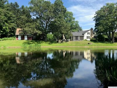 Dutchess County Single Family Home For Sale: 71 Ruskey Lane