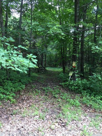 Taghkanic NY Residential Lots & Land For Sale: $110,000