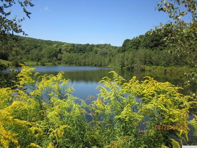 Gallatin NY Residential Lots & Land For Sale: $250,000