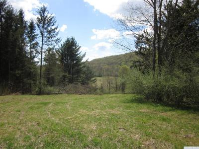 Gallatin NY Residential Lots & Land For Sale: $225,000