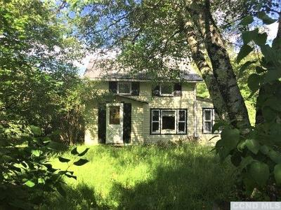 Greene County Single Family Home For Sale: 82 Roaring Kill Road