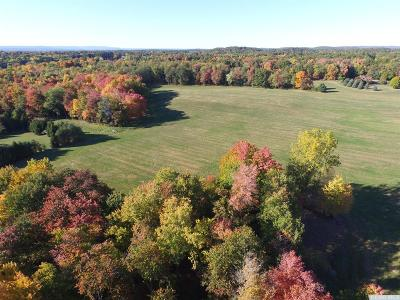 Kinderhook NY Residential Lots & Land For Sale: $995,000