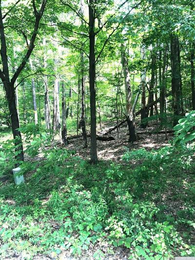 Coxsackie NY Residential Lots & Land For Sale: $2,500