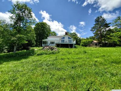 Cornwallville NY Single Family Home For Sale: $675,000