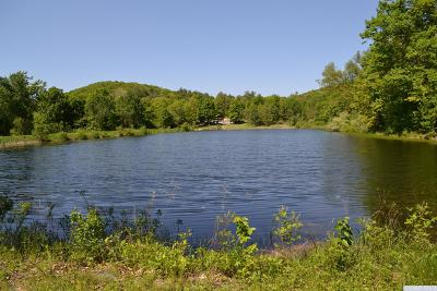 Columbia County Residential Lots & Land For Sale: 118 Skiba Road
