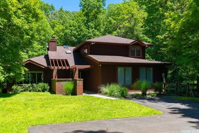 Dutchess County Single Family Home For Sale: 45 Wynkoop Lane