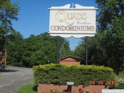 Windham Single Family Home Accepted Offer: 3 Quads Way