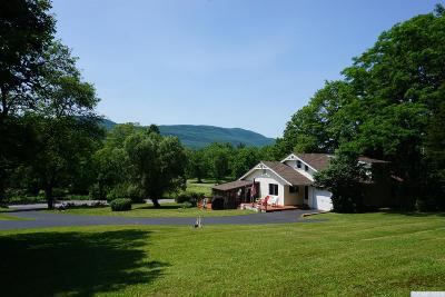 Catskill Single Family Home For Sale: 4458 Route 32