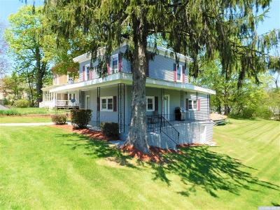 Catskill Single Family Home For Sale: 118 Jefferson Heights