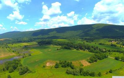 Dutchess County Residential Lots & Land For Sale: Boston Corners Road
