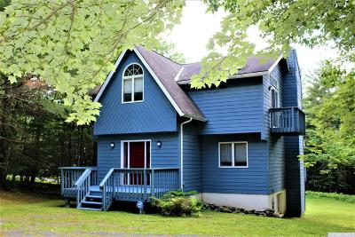 Windham Single Family Home For Sale: 77 Cross Road