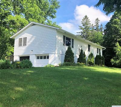 Dutchess County Single Family Home For Sale: 67 Depot Hill Road