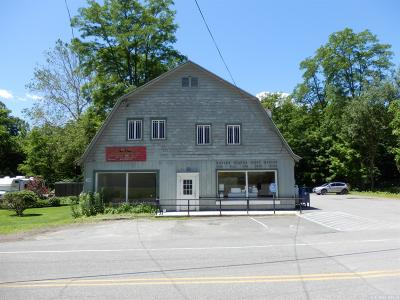 Greene County Commercial For Sale: 111 Oak Hill Road