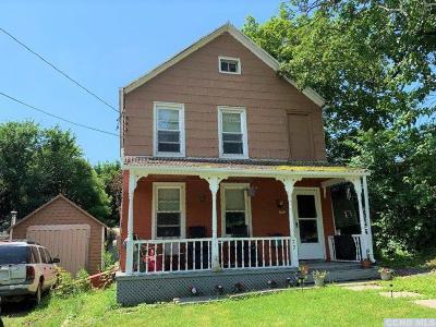 Catskill Single Family Home For Sale: 73 Cauterskill Avenue