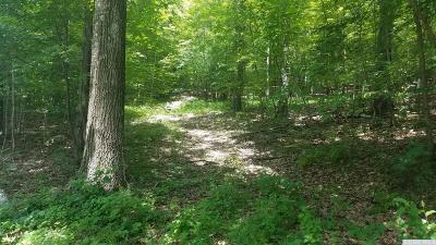 Hillsdale Residential Lots & Land For Sale: West End Road