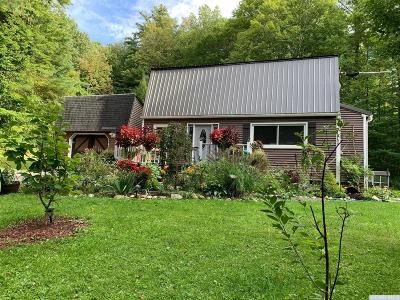 Canaan NY Single Family Home For Sale: $295,000