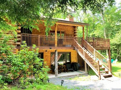 Greene County Single Family Home For Sale: 87 Ski Bowl Road