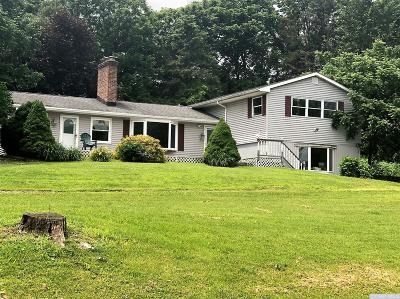 Dutchess County Single Family Home For Sale: 101 Cooper Road