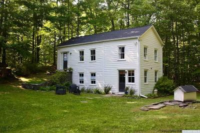 Saugerties Single Family Home For Sale: 79 Wrolsen Drive