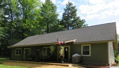 Greene County Single Family Home For Sale: 51 Wickes Lane