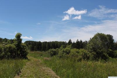 Westerlo NY Residential Lots & Land For Sale: $29,500