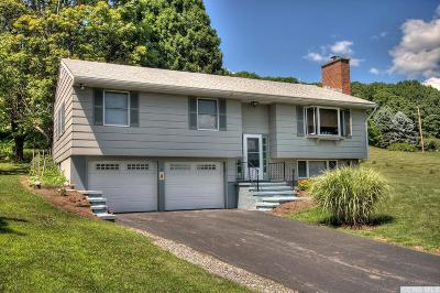 Copake Single Family Home For Sale: 7 Deer Track Lane