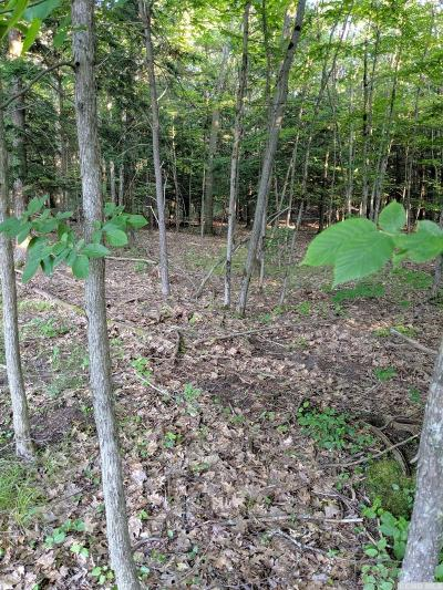 Westerlo NY Residential Lots & Land For Sale: $38,500