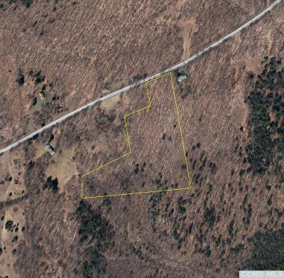 Windham NY Residential Lots & Land For Sale: $135,000