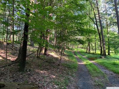 Athens NY Residential Lots & Land For Sale: $39,900