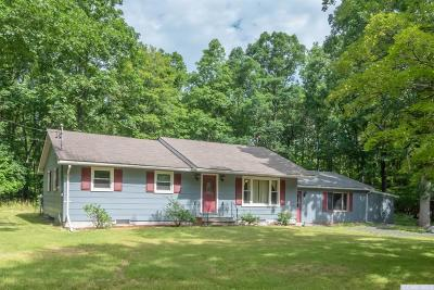 Greene County Single Family Home For Sale: 41 Hm Chadderdon