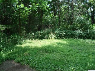 Athens NY Residential Lots & Land For Sale: $7,900