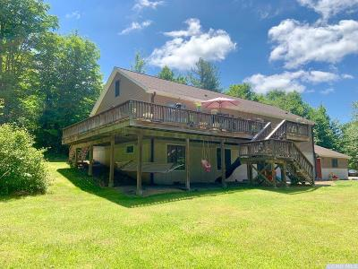 Greene County Single Family Home Accepted Offer: 49 High Ridge Road