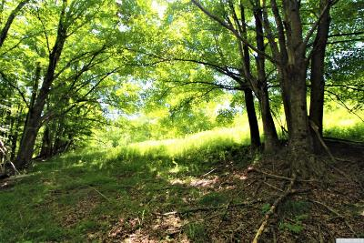 Jewett NY Residential Lots & Land For Sale: $37,500