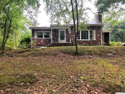 Greene County Single Family Home For Sale: 197 Stony Brook Road