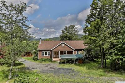 Woodstock Single Family Home For Sale: 375 Coldbrook Rd