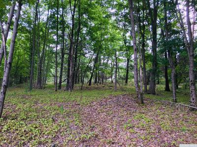 Dutchess County Residential Lots & Land For Sale: 1204 Bulls Head Road