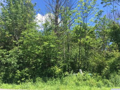 Athens NY Residential Lots & Land For Sale: $25,000
