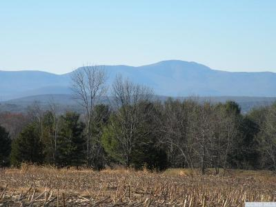 Columbia County Residential Lots & Land For Sale: 6735 Us Route 9