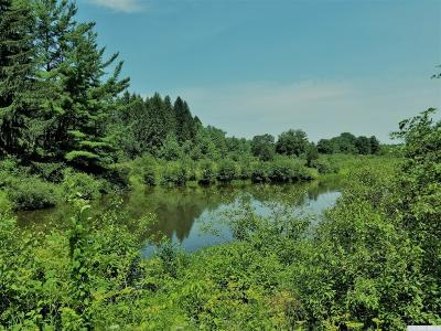 Earlton NY Residential Lots & Land For Sale: $125,000