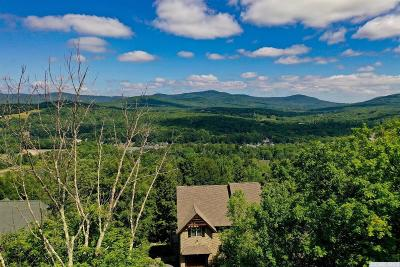 Windham NY Residential Lots & Land For Sale: $250,000