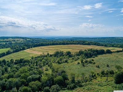 Chatham NY Farm For Sale: $2,600,000