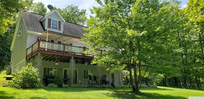 Copake Single Family Home For Sale: 84 Connelly