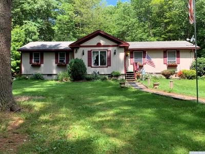 New Lebanon Single Family Home For Sale: 4125 County Route 9 South