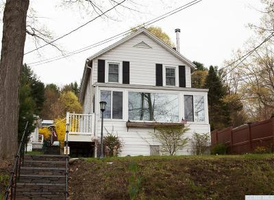 Copake Single Family Home For Sale: 445 Lakeview Road