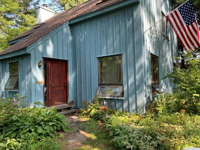 Columbia County Single Family Home For Sale: 180 Boston Corners