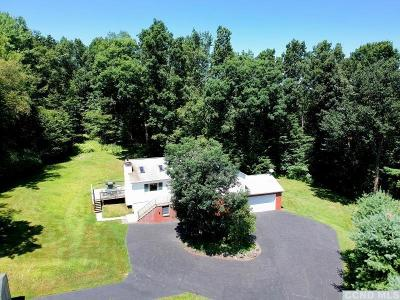 Greene County Single Family Home For Sale: 849 Red Mill Road
