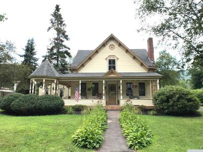 Windham Single Family Home For Sale: 5419 Rt 23