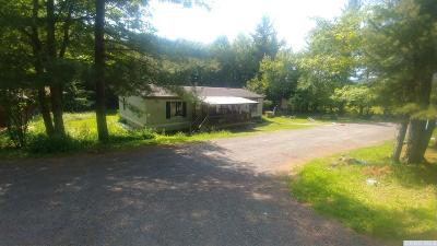 Windham Single Family Home For Sale: 333 Begley Rd.
